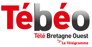 tebeo-logo.png